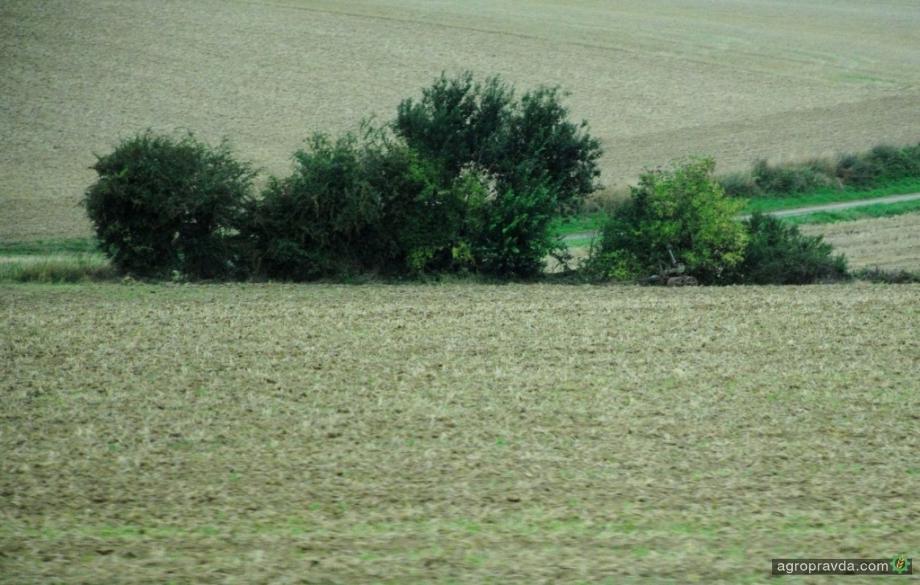 Как живут аграрии в Донецкой области