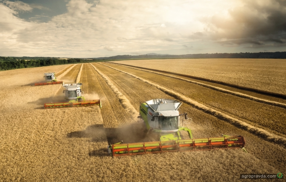 Українські аграрії зібрали історичний максимум пшениці і ячменю