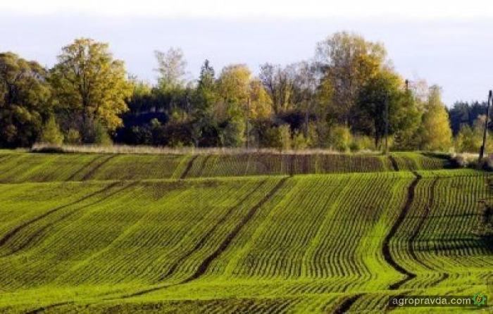 В Киевской области заключены 12 аграрных расписок на 23 млн грн.