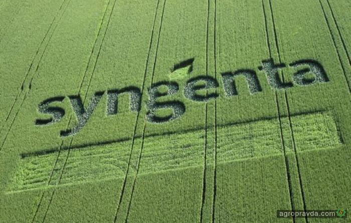 Почему Syngenta не строит заводы в Украине