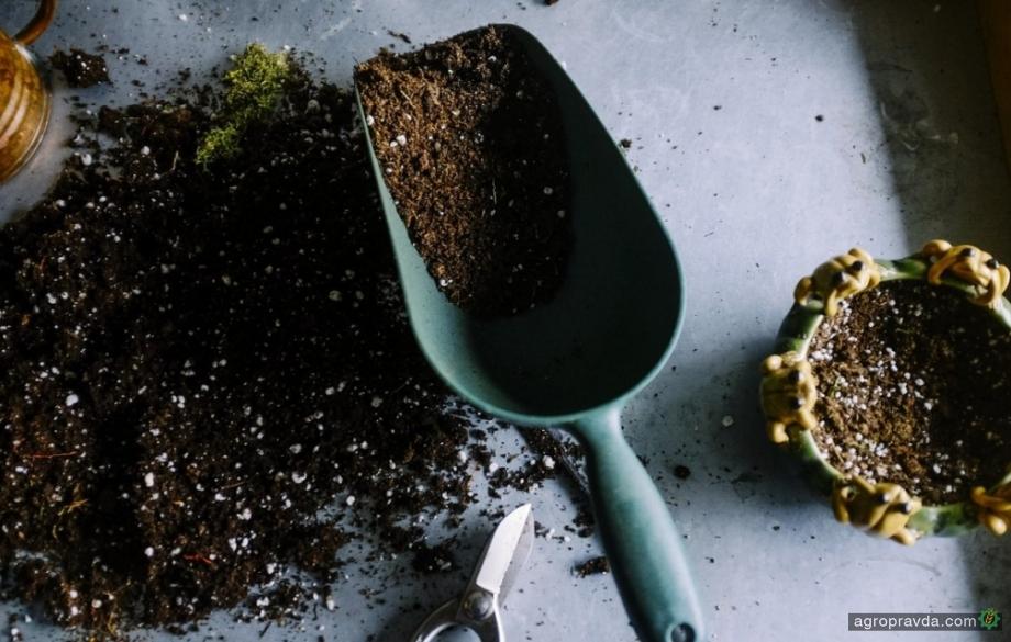 Поляки выделили $50 млн в создание экологически чистых удобрений