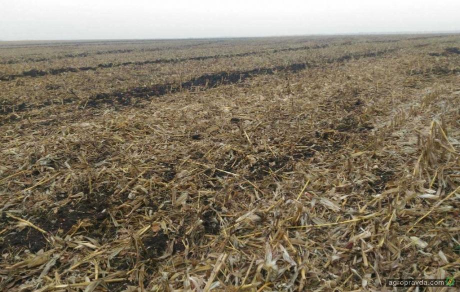 Стоит ли использовать деструкторы после уборки кукурузы?