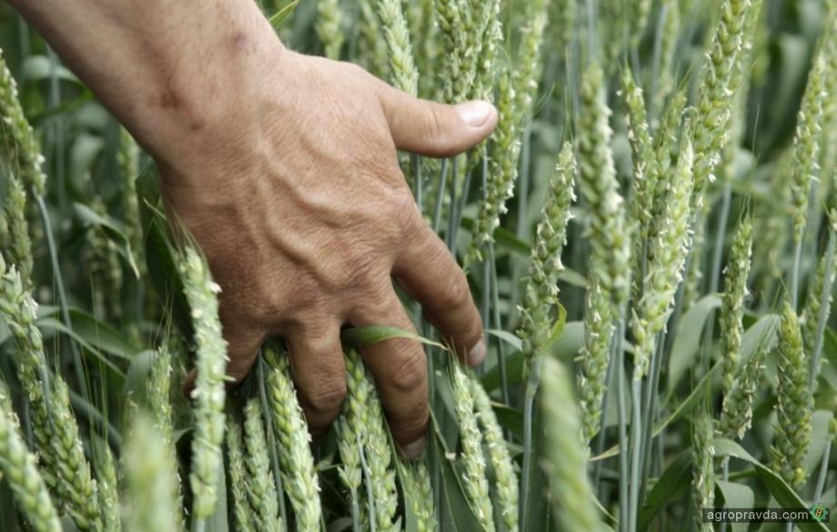 У аграриев сократились зарплаты