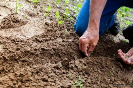 Производители сложных удобрений заявляют о возможном крахе отрасли