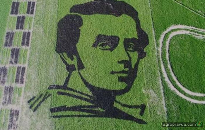 Портрет Шевченко на поле занесен в Книгу Рекордов