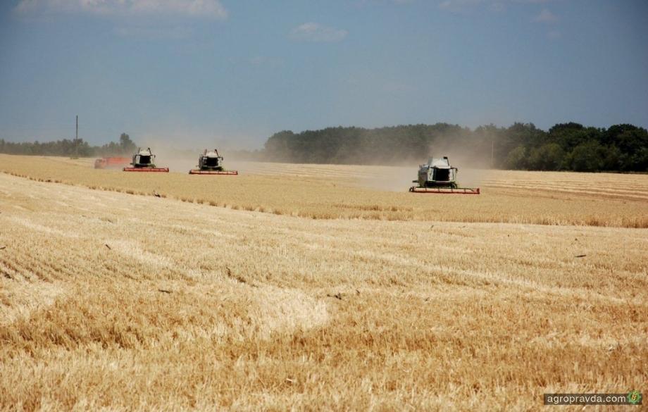 Украину ожидает рекордный урожай зерна
