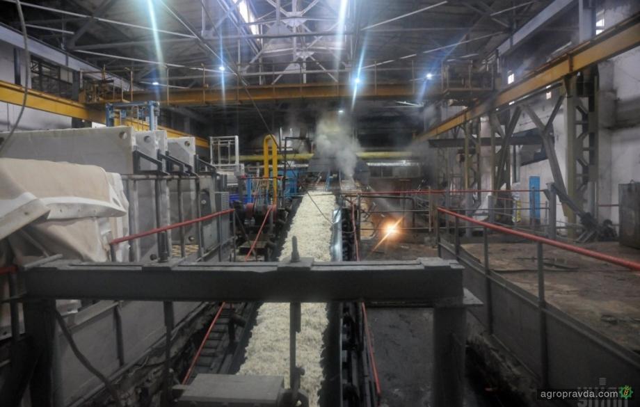 Сколько сахара производят украинские заводы