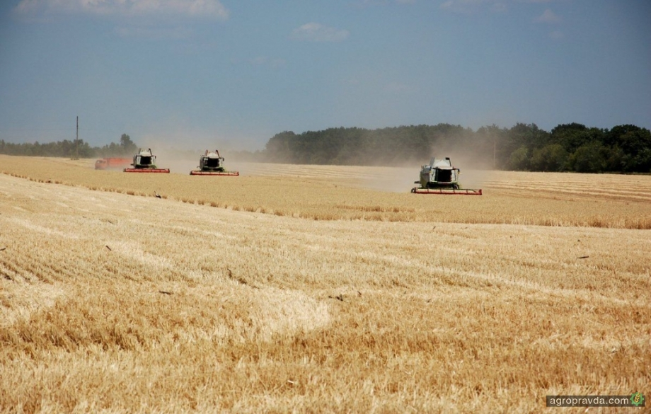 Аграрии Украины создали Агропродовольственную раду
