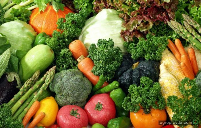 Экспорт овощей превысил 43,7 млн долл.