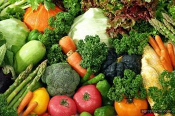 Аграрные расписки начинают работать на Киевщине