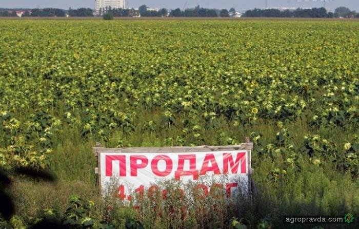 Всемирный банк требует снять мораторий на продажу земли уже с января 2018