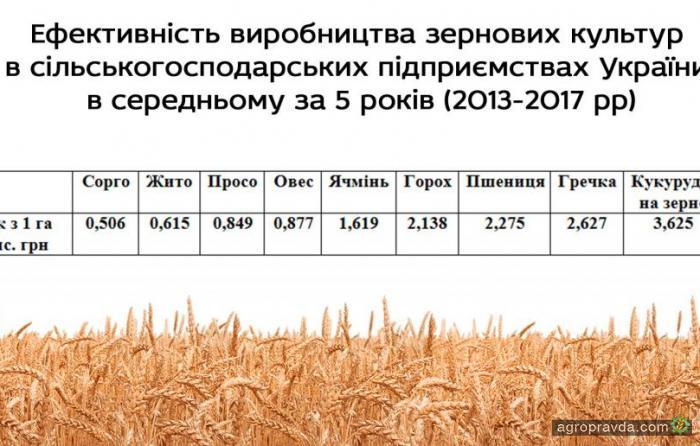 Определена самая прибыльная сельхозкультура в Украине