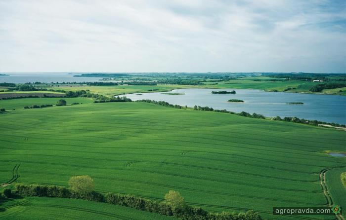 МинАП запустил пилотный проект по продаже 10 тыс. га сельхозземель
