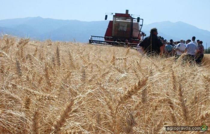500 фермерских хозяйств «вышли из тени» в 2017 г.