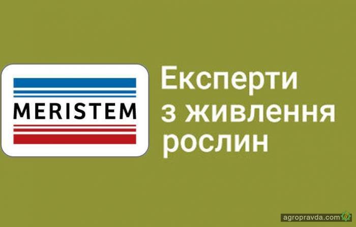Хорошие удобрения для добрых дел: компании Meristem и «ПЛАНТА ГРУПП» меняют агросферу