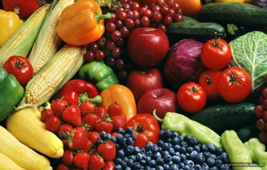 Украинские овощеводы полностью избавились от зависимости от РФ