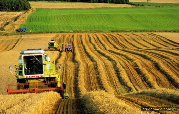 В Украине растет количество агрохолдингов