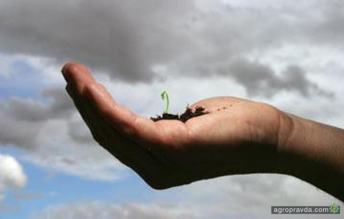 BASF хочет усилить направление цифрового сельского хозяйства