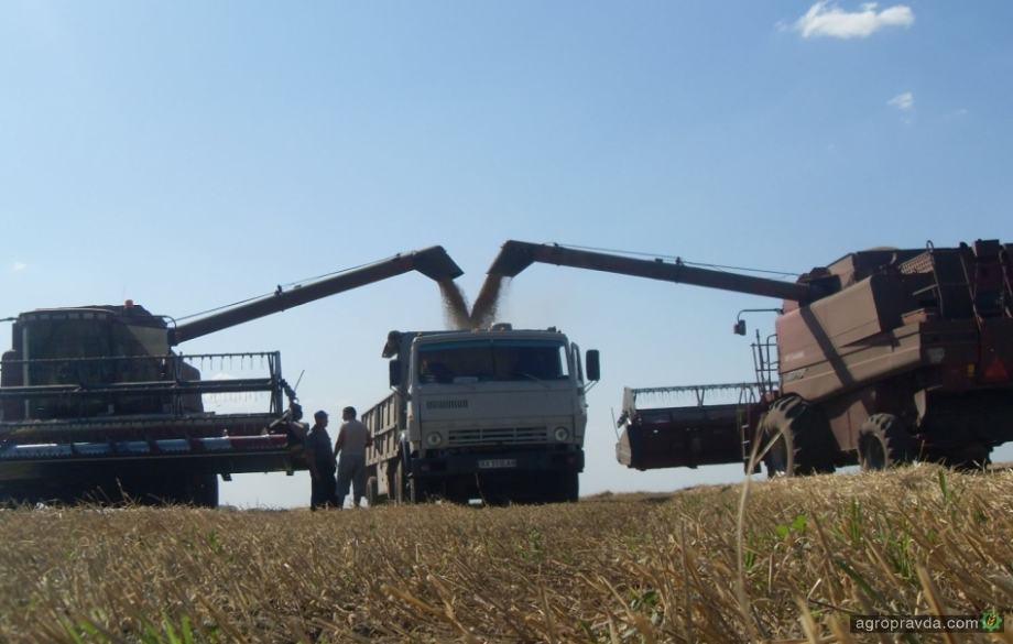 Группа «Агротрейд» собрала озимые зерновые