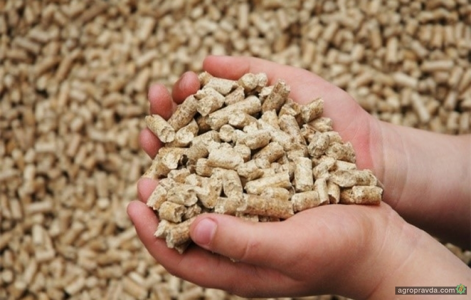 Украина экспортировала рекордный объем шрота и жмыха