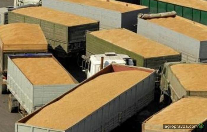 За неделю экспортировано 308 тыс. тонн зерна