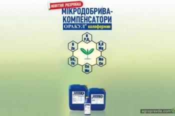 Оракул колофермин – новейшая разработка от группы компаний Долина