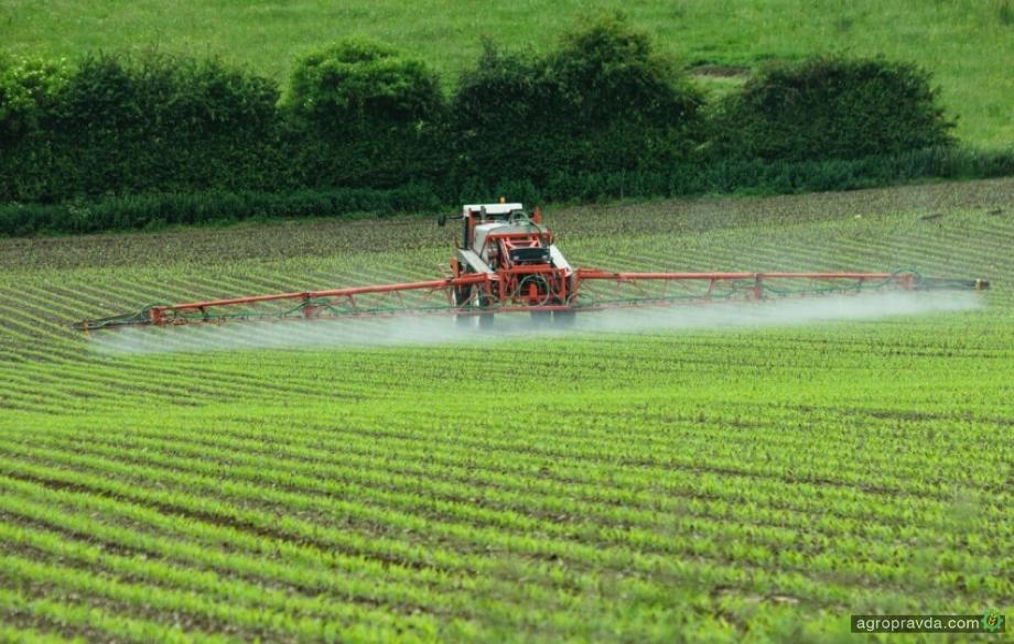 Качество украинской пшеницы может пострадать ввиду недостаточного использования СЗР