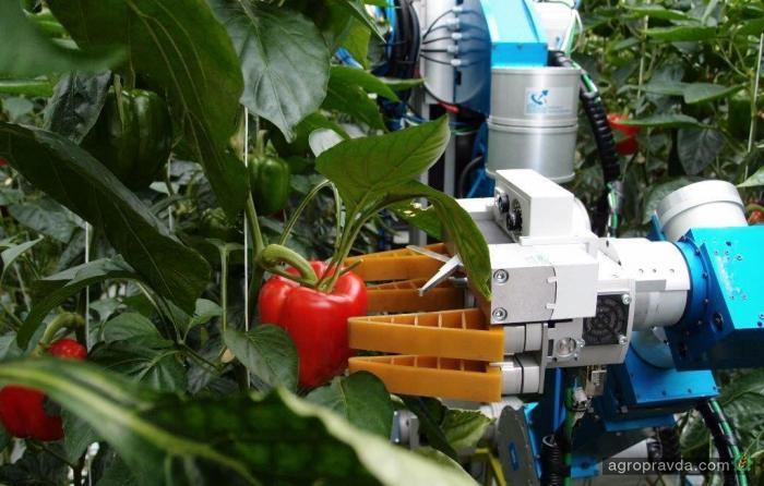дом поселке реферат робототехника в сельском хозяйстве теме