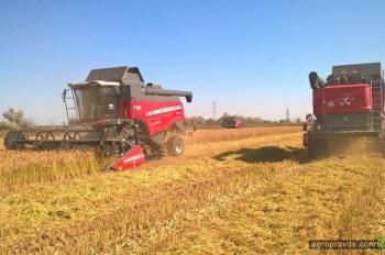 Рисоуборочные комбайны Massey Ferguson пополняют технопарки предприятий юга Украины