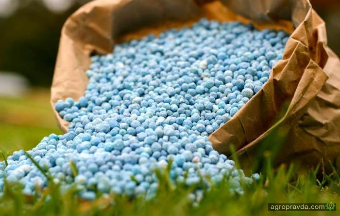 Хватит ли удобрений на осенние полевые работы