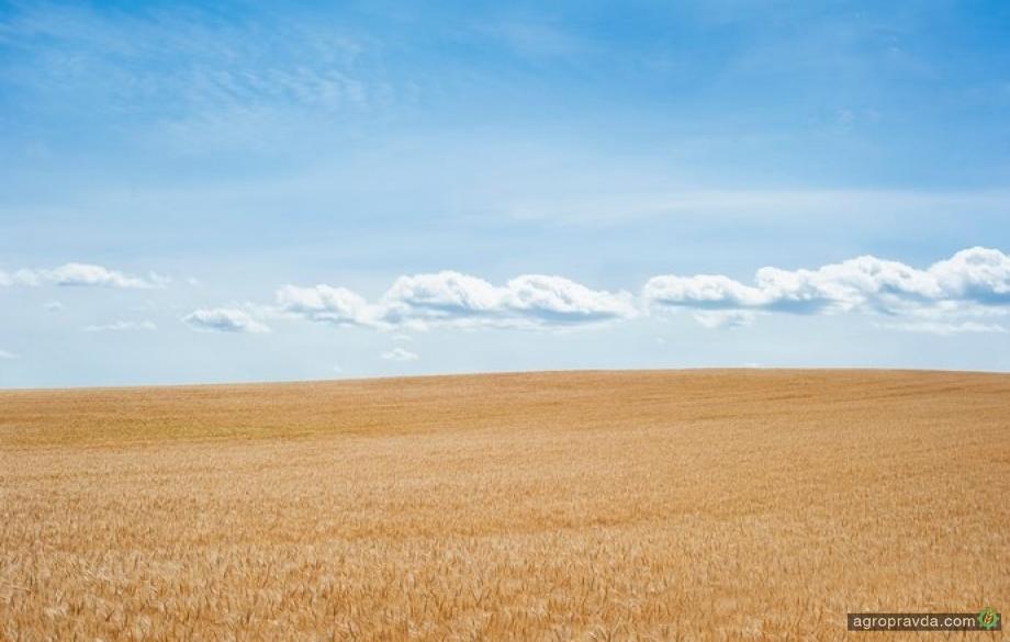 Названы плюсы и минусы нового законопроекта о рынке земли