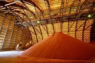 Производители удобрений из РФ за 4 месяца вывезли из Украины $100 млн