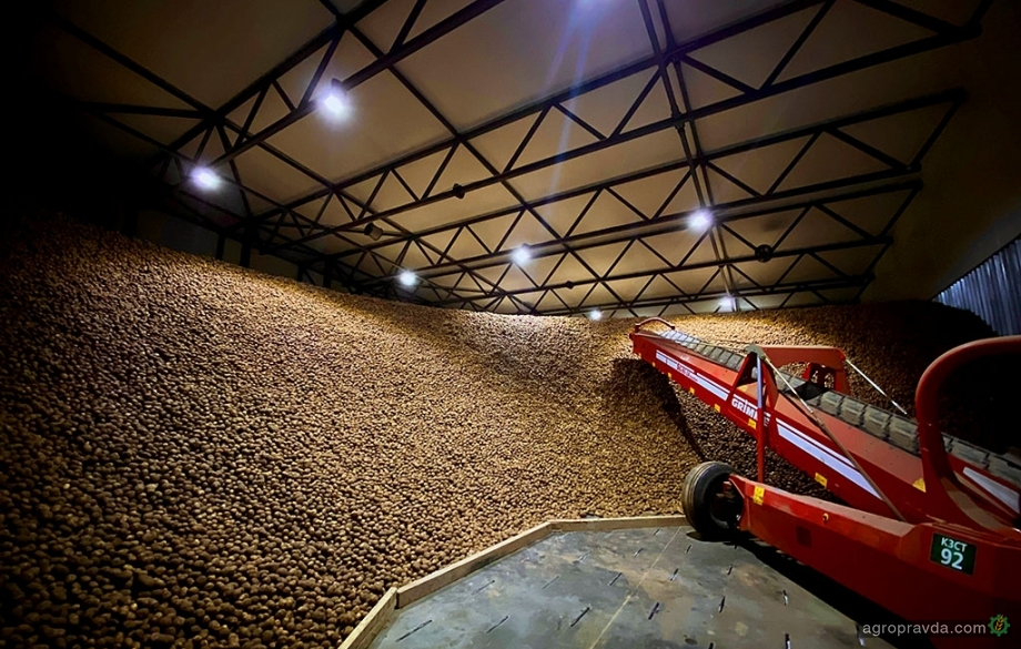 В Украине запущено самое современное картофелехранилище