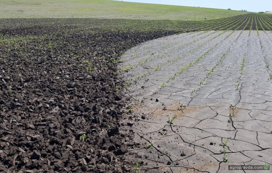 Посевы в Украине получили очередной стресс