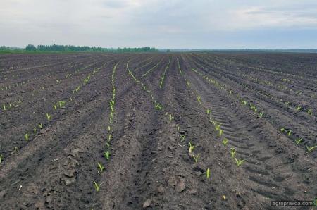 Експеримент вдався! Модернізація сівалки для точного висіву кукурудзи