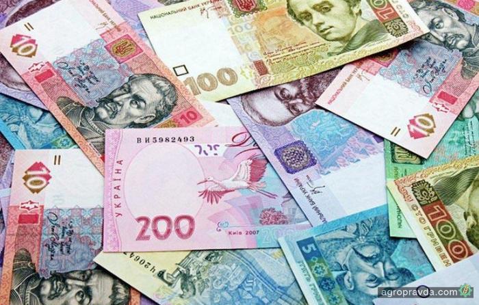 Разоблачена схема незаконного экспорта зерна на 6,6 млрд. грн.
