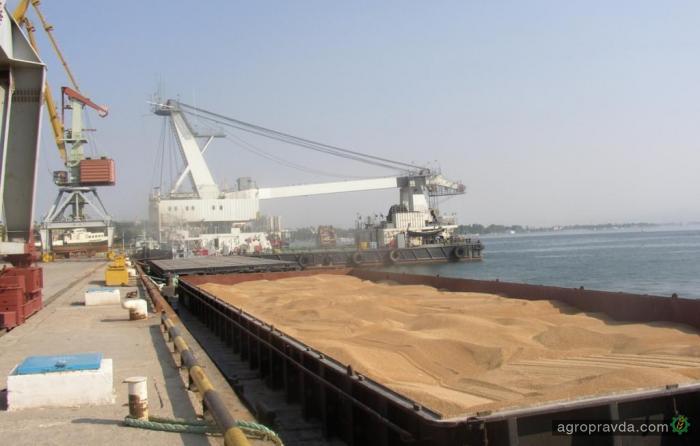 Экспорт зерновых достиг 19,5 млн тонн