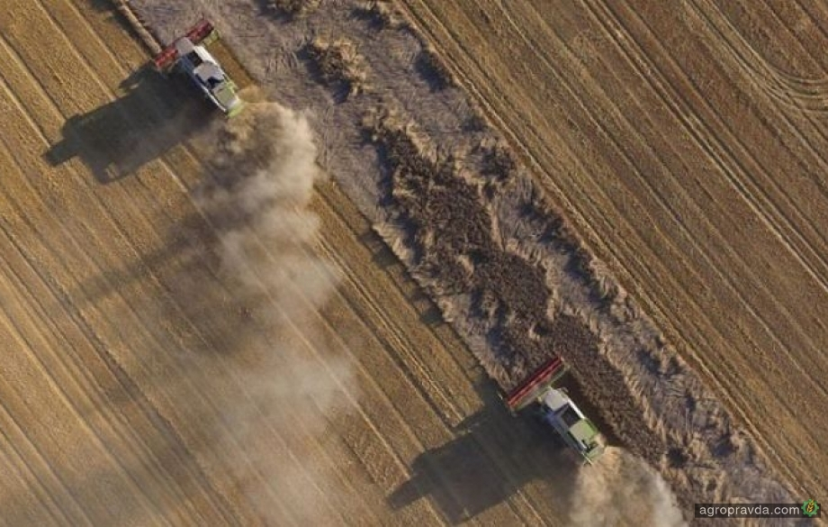 Рынок земли близко: что делать фермерам, которым не хватает денег