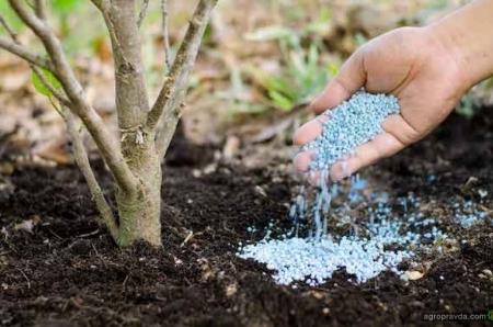 Специалисты подсчитали когда закончатся фосфорные удобрения