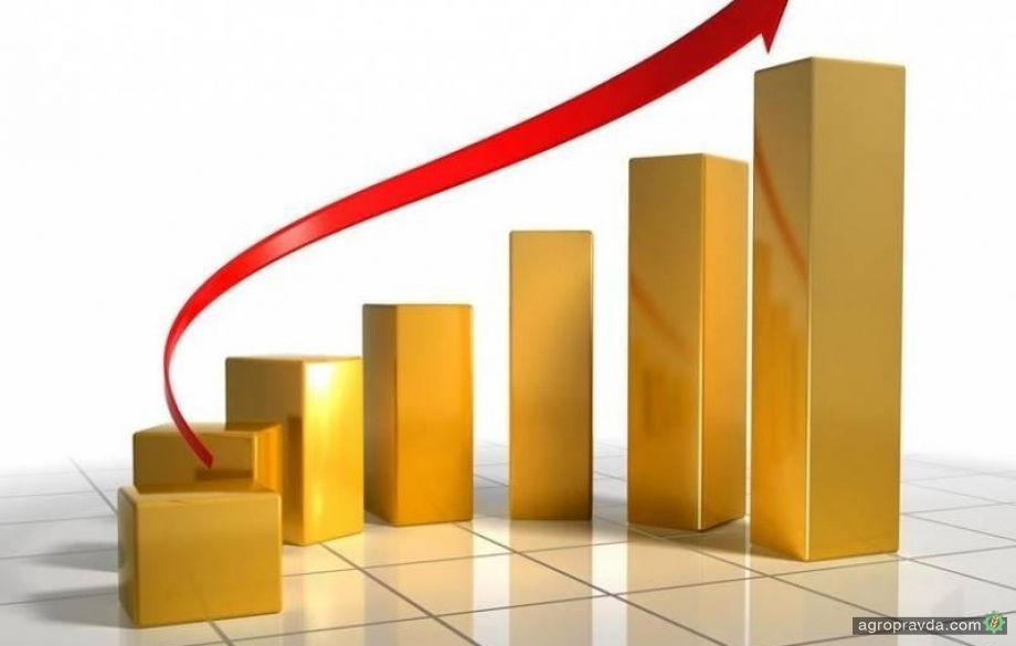 Сельхозпроизводство в Украине продолжает рост