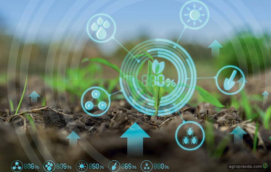 Цифровые модели в сельском хозяйстве