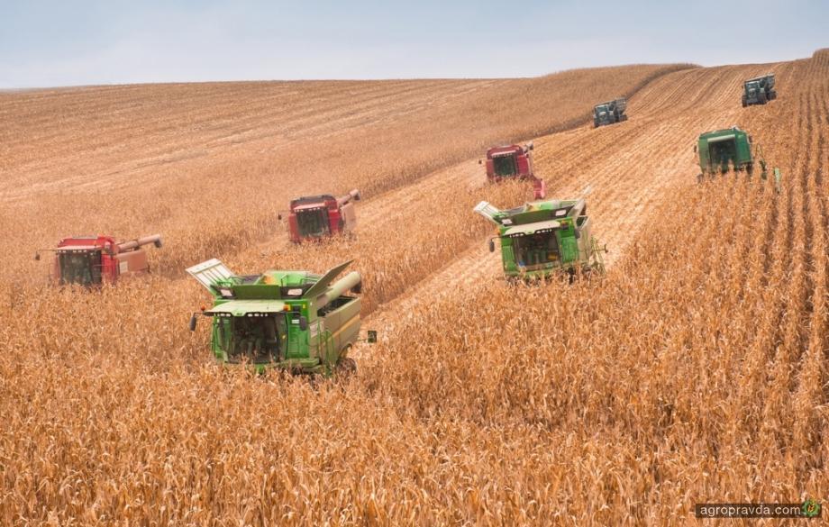 Украина увеличила производство ряда зерновых культур