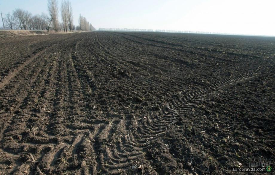Запасы влаги под озимыми в Украине самые низкие за 10 лет