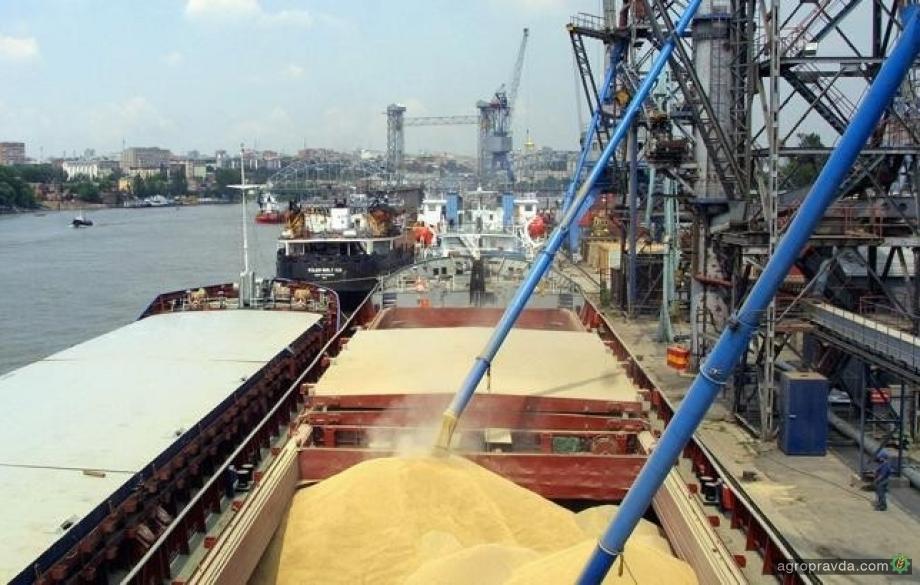 Экспорт зерна достиг 48,3 млн тонн