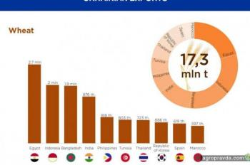 Украина и агроэкспорт: инфографика