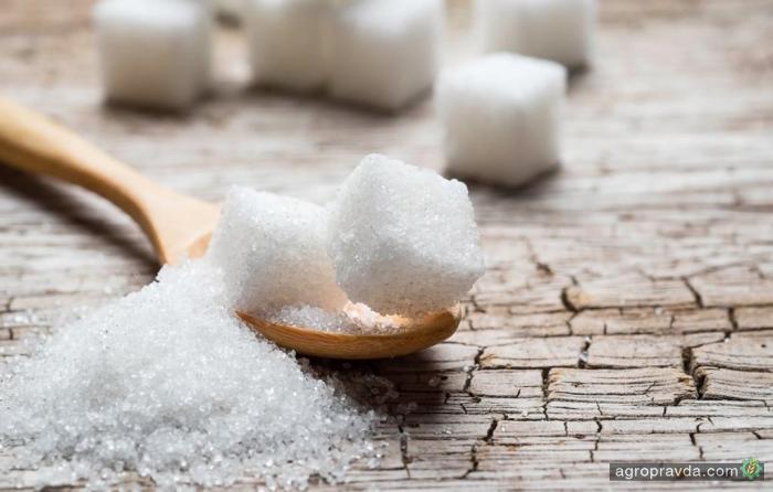 Украина экспортировала рекордное количество сахара