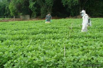Украина готовится к дефициту пестицидов