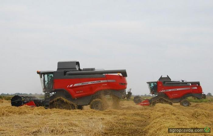 Как комбайны Massey Ferguson рис убирают
