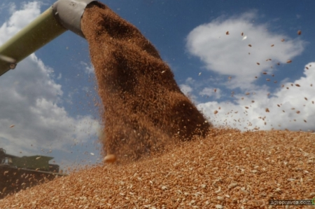 Экспорт агропродукции за 11 мес. достиг $20 млрд.