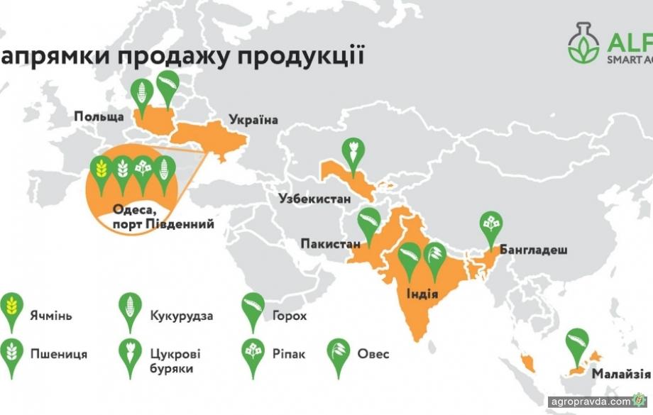 У украинских аграриев расширился выбор инструментов для реализации сельхозпродукции